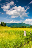 Fence in a farm field and view of distant mountains in the rural — Stock Photo