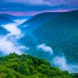 Fog in the Blackwater Canyon at sunset, seen from Lindy Point, B — Stock Photo #52502111