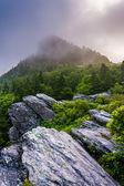 Grandfather Mountain in fog, near Linville, North Carolina.  — Stock Photo