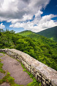 Mid-day view of the Appalachian Mountains  from Craggy Pinnacle, — Stock Photo