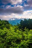 Morning view from the Blue Ridge Parkway, North Carolina. — Stock Photo