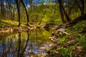 Reflections in the Patowmack Canal at Great Falls Park, Virginia — Stock Photo
