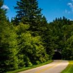 Tunnel on the Blue Ridge Parkway in North Carolina. — Stock Photo #52514289