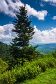 View from Devils Courthouse Overlook, on the Blue Ridge Parkway  — Stock Photo