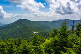 View of the Appalachian Mountains from the Observation Tower at — Stock Photo