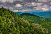 View of the Appalachians from the Blue Ridge Parkway in North Ca — Stock Photo