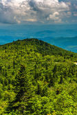View of the Blue Ridge Mountains from Black Balsam Knob Road, ne — Stock Photo