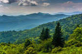 View of the Blue Ridge Mountains seen from Cowee Mountains Overl — Stock Photo