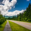 Walking path along the Blue Ridge Parkway in North Carolina.  — Stock Photo #52520229
