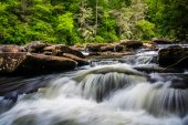 Cascades on Little River, in Dupont State Forest, North Carolina — Stock Photo