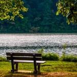 Bench along the shore of Lake Williams, in York, Pennsylvania.  — Stock Photo #52576985