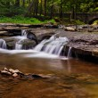 Cascades on Wolf Creek, Letchworth State Park, New York. — Stock Photo #52579517