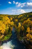 Autumn color along the Gunpowder River seen from Prettyboy Dam i — Stock Photo