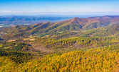 Autumn color in the Appalachian Mountains, seen from Skyline Dri — Foto Stock