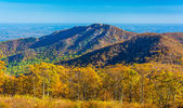 Autumn view of Old Rag, in Shenandoah National Park, Virginia.  — Stock Photo