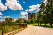 Bike path at Druid Hill Park in Baltimore, Maryland. — Stock Photo