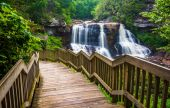 Blackwater cai e uma trilha em blackwater cai parque estadual, wes — Fotografia Stock