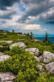 Boulders and view of the Appalachian Mountains from Bear Rocks P — Foto Stock