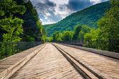 Köprü ve dağlar lehigh gorge state Park, pennsylvania. — Stok fotoğraf