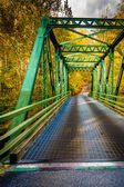 Bridge in Gunpowder Falls State Park, Maryland.  — Stock Photo