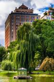 Building and weeping willow tree at the Public Garden in Boston, — Stock Photo