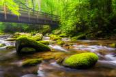 Cascades and walking bridge over the Oconaluftee River, at Great — Stock Photo
