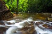 Cascades in the stream below Looking Glass Falls, in Pisgah Nati — Stock Photo