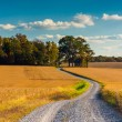 Dirt road through farm fields in rural York County, Pennsylvania — Stock Photo