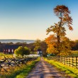 Dirt road to a farm and autumn colors in Gettysburg, Pennsylvani — Stock Photo #52582901