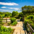 Gardens at the National Arboretum in Washington, DC.  — Stock Photo #52589467