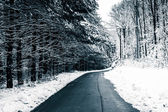 Country road during the winter in rural Carroll County, Maryland — Stock Photo