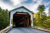 Ponte coperto in rurale contea di lancaster, pennsylvania. — Foto Stock