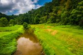 Creek and field in rural Carroll County, Maryland. — Stock Photo