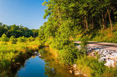 Creek and wetland along a country road in Southern York County,  — Stock Photo