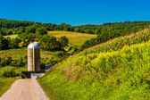 Dirt road and a silo in rural York County, Pennsylvania.  — Stock Photo