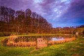 Dramatyczne niebo zachód słońca nad stawem w wiejskich york county, pennsylvan — Zdjęcie stockowe