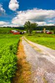 Driveway and farm buildings in rural Baltimore County, Maryland. — Stock Photo