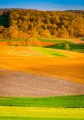 Evening light on farm fields in rural York County, Pennsylvania. — Foto Stock