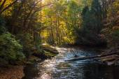 Evening light on the Gunpowder River in Gunpowder Falls State Pa — Foto Stock