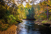 Evening light on the Gunpowder River in Gunpowder Falls State Pa — Stock Photo