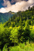 Evening light on the Smokies, seen from an overlook on Newfound  — Stock Photo