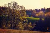Evening light on trees and rolling hills of Southern York County — Stok fotoğraf