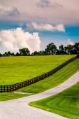 Zaun entlang einer Einfahrt im York County, pennsylvania. — Stockfoto