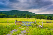 Fence and gate in a farm field in the Potomac Highlands of West  — Stock Photo