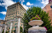 Flowers and Buncombe County Courthouse, in Asheville, North Caro — Stock Photo