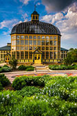 Gardens and the Howard Peters Rawlings Conservatory in Druid Hil — Стоковое фото
