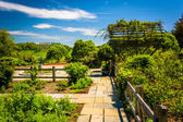 Gardens at the National Arboretum in Washington, DC. — Stock Photo