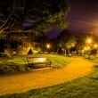 Path at night in a park in Alexandria, Virginia. — Stock Photo #52597599