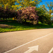 Paved walkway and colorful trees at Druid Hill Park in Baltimore — Stock Photo #52597891