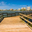 Постер, плакат: Pier on the Halifax River and view of Daytona Beach Port Orange